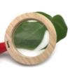wooden magnifying glass close up