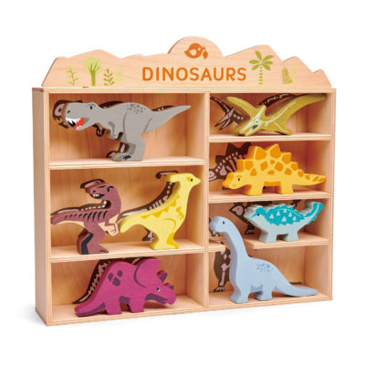 Dinosaurs Shelf Set