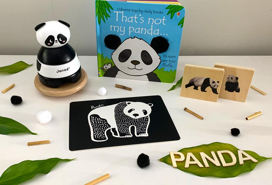 Thats not my panda book play