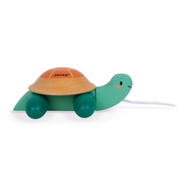 Pull Along Turtle Side