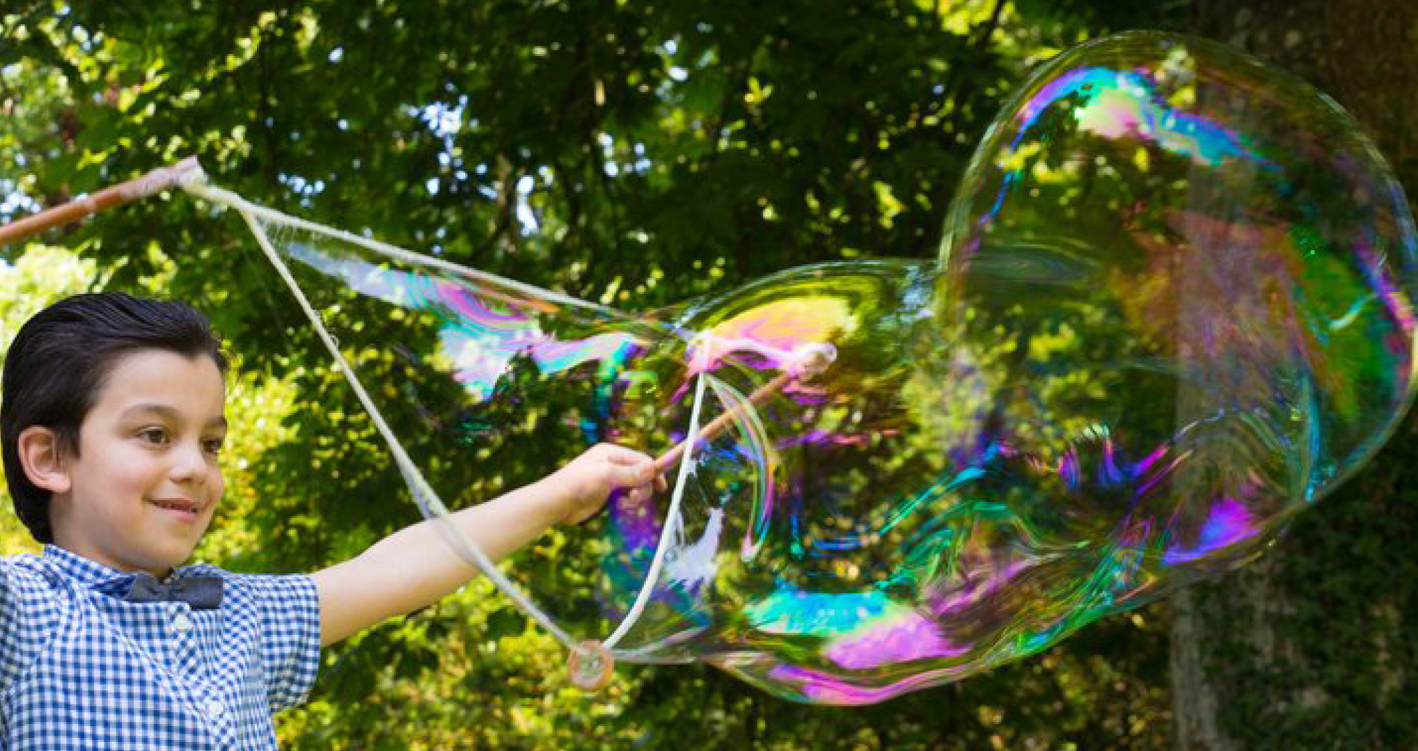 Summer of Bubbles